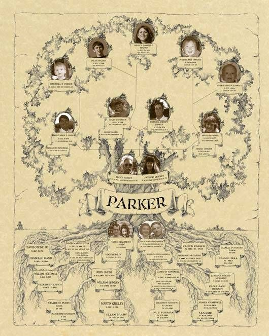 Classic Family Tree Template makers have over 3,835 standard  family tree templates--use our family tree forms to match up to 6 generations family trees.Custom templates for larger trees.