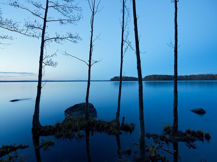 Sääksjärvi, 2014, Diasec, 90 x 120cm