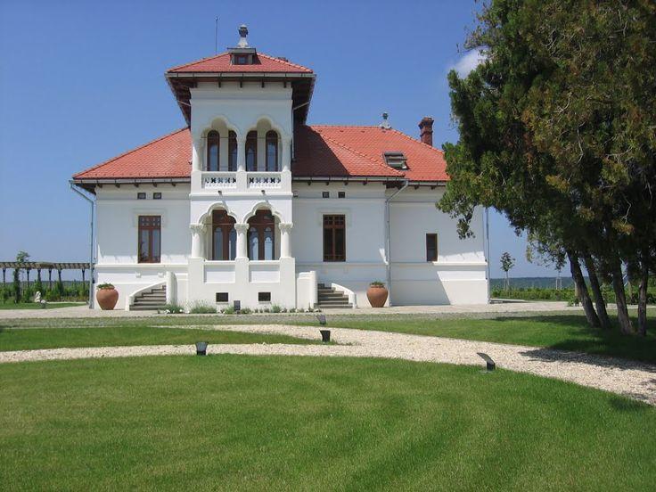 Vila Dobrușa (Crama AVINCIS), Drăgășani