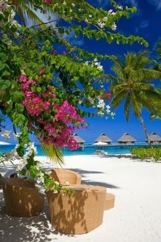 Oh Yeah!!  I'd love to be on this beach right now :)  Although I'd probably be working on Facebook ads LOL Bora Bora, French Polynesia