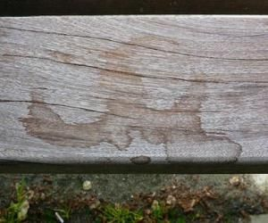 Remove Stains from Wood