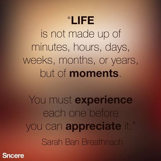 Life is not made up of minutes, hours, days, weeks, months or years, but of moments. You must experience each one before you can appreciate it. - Saran Ban Breathnach