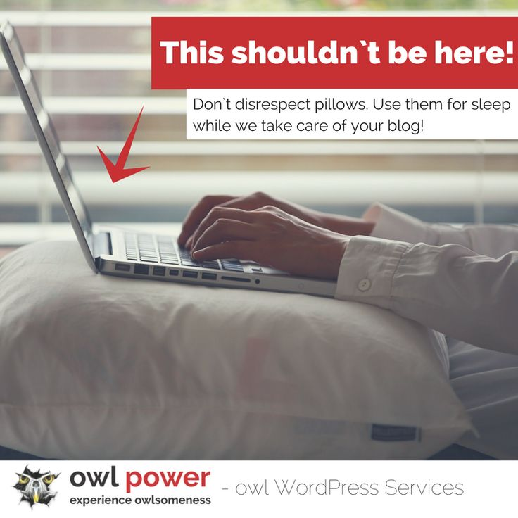 Save valuable time with owl WordPress services and allow yourself a break!