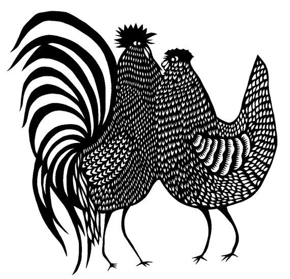 Line Drawing Rooster : Best coloring pages line drawings chickens images on