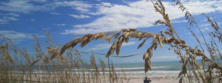 Mexico Beach Florida Vacation Rentals Parker Realty
