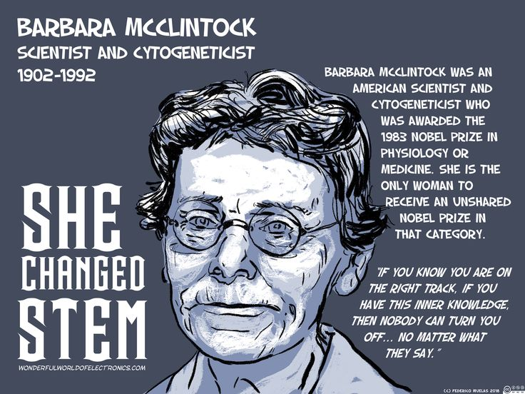 Barbara McClintock (June 16, 1902 – September 2, 1992) was an American scientist and cytogeneticist who was awarded the 1983 Nobel Prize in Physiology or Medicine. She is the only woman to receive an unshared Nobel Prize in that category.