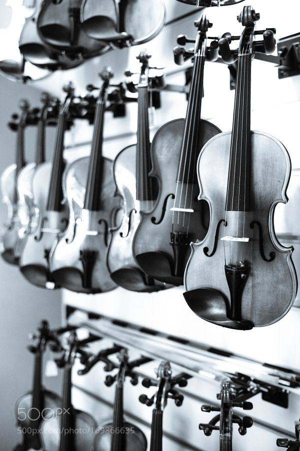 Violin Store by celikogeday