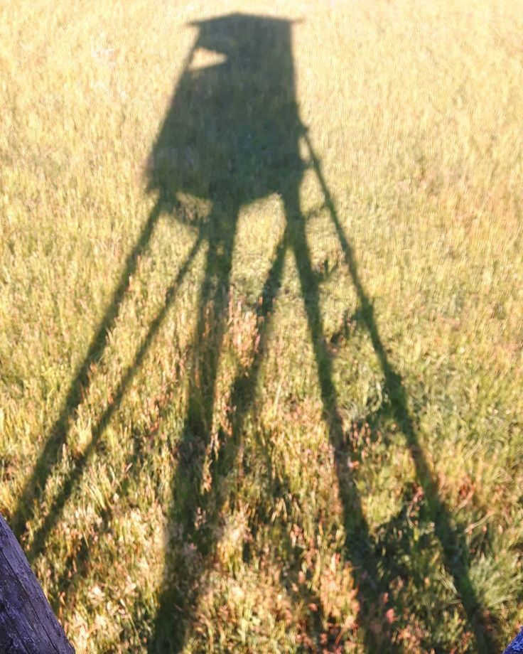 Mein 2. Wohnsitz �� #jagd #jakt #hunting #hunt #passion #nofilter #nature #natur #reh #roedeer #rehwild #rehbock #bockjagd #bock #ansitz #kanzel #hochsitz #imrevier #caza #chasse #schatten #sonne #sonnenschein #sun #sunrays #kitz #rehkitz http://misstagram.com/ipost/1543376185130645427/?code=BVrLHaVgnez