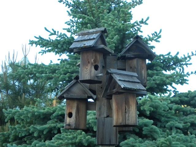 License Plate Birdhouse