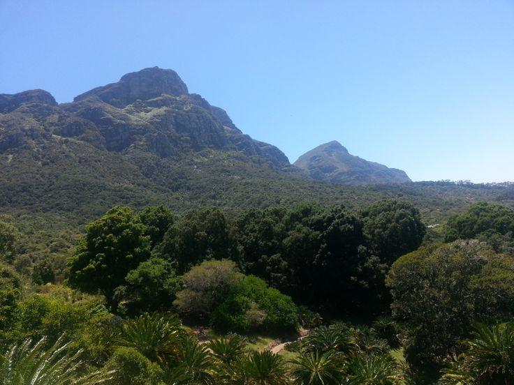 Kirstenbosch Hiking Trail view of mountain