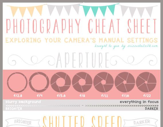 Photography 101 - Cheat Sheet & Camera Basics reference guide outlines important photography terms like aperture, shutter speed, ISO and exposure. Created by Becky Thompson, she offers tips for the right settings for each, depending on how you want your photos to look.