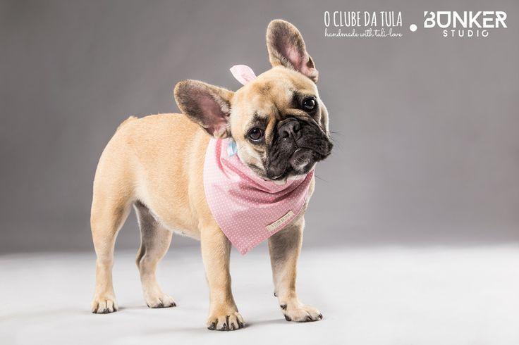 "Pañuelo para perros ""Romantic"" Dots rosa, cinta pintitas celeste con lacito, 100% algodón. Quieres ser una princesa moderna? Descubre cómo en O Clube da Tula...  http://oclubedatula.com/es/produtos/item/panuelo-romantic-dots-rosa-cinta-pintitas-celeste-con-lacito/"