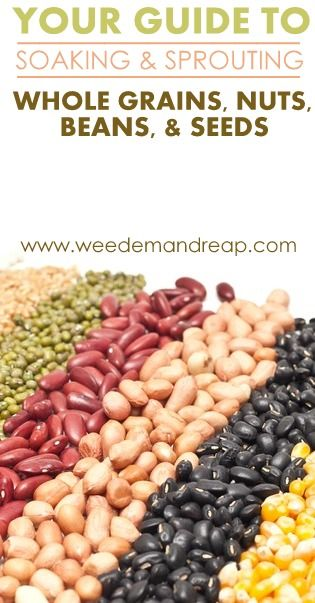 Your Guide to Soaking & Sprouting Whole Grains, Beans, Nuts, & Seeds - Weed'em & Reap