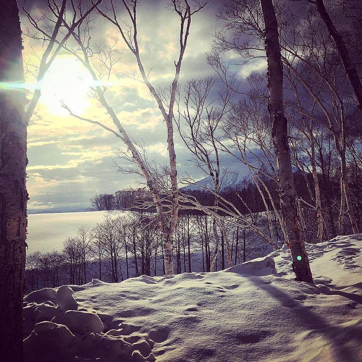 朝。日の出 #sunrise #自然 #beautiful #雪景色 #snow #powdersnow #nature #niceview #japan #hokkaido  #morning #白樺 #kushan #倶知安 #坐忘林 #zaborin #hotspring #日の入り #晴れ #日本 #ニセコ #niseko #羊蹄山 #mountaindew #sun #太陽 #tree #温泉 #日の出 #おはよう @zaborin.ryokan | zaborin.com