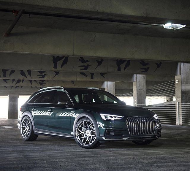 Dynamic Lowering Springs For B9 Audi A4 Allroad Audi Wagon Audi A4 Audi