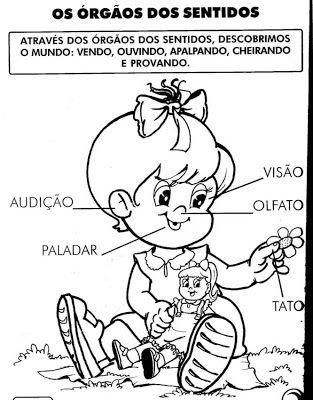 as partes da cabeça em portugues - Buscar con Google