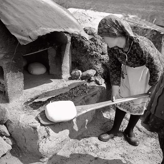 Γκιούλμπερη Λάρισας, φούρνισμα ψωμιού φωτ.Τάκης Τλούπας, 1972