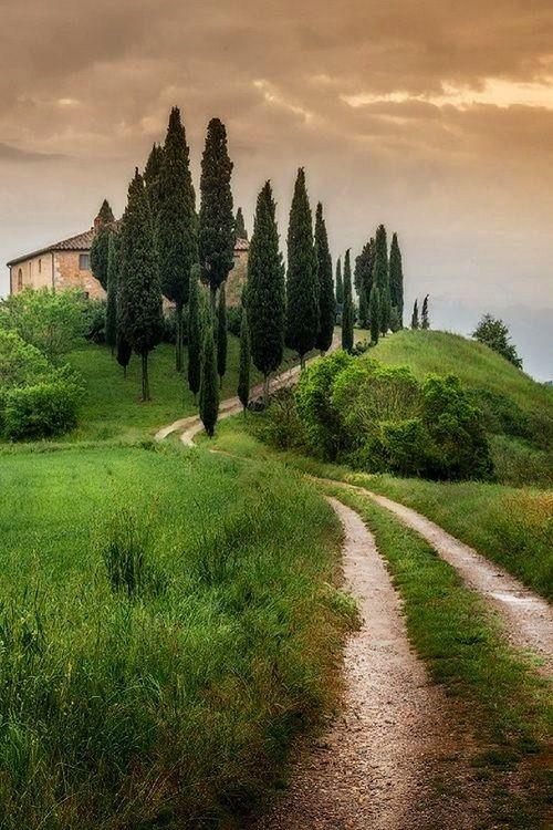 Toscana - Italy   Cipressi Val Dorcia Siena
