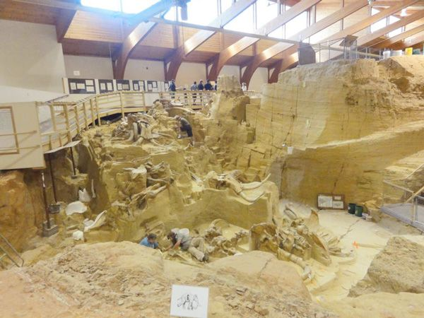 Top 10 Things to Do with Kids in the Black Hills   Midwest Living  To really impress the kids, reserve a spot on one- or two-hour paleontologist excavations or an atlatl throwing experience. (605) 745-6017; mammothsite.com