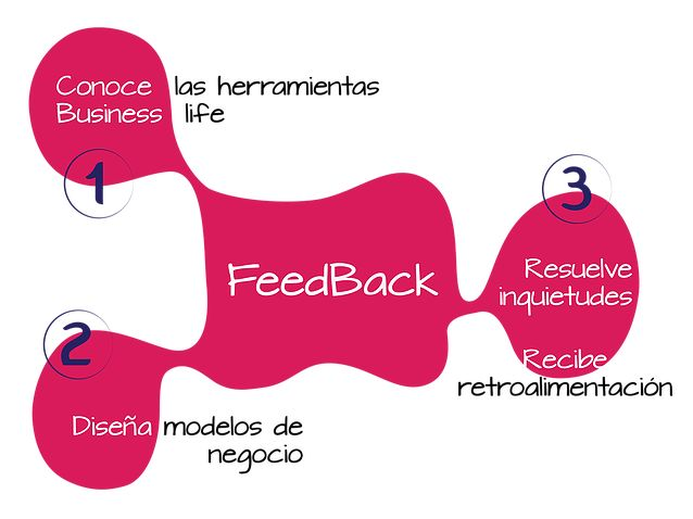 Programa de asesoría Feedback de Business life. http://www.businesslifemodel.com/#!business-life-english/co7