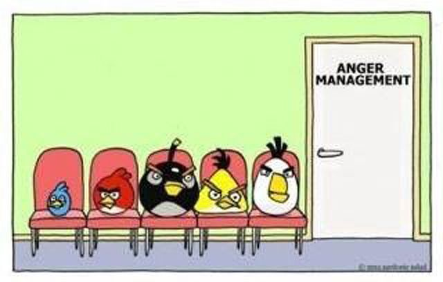 angry birds anger management: Funny Shitz, De Tout It S, Giggl, Anger Issues, Funny You Know What, Angry Birds, Anger Management, Birds Anger, Funny Thoughts Provok