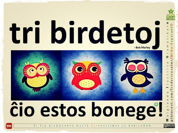 #migo #esperanto #miziko #bobmarley #ĉio #birdo #eto #sufikzo #ege #esti #bone #tri