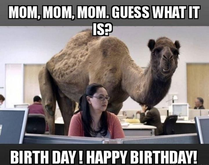 101 Happy Birthday Mom Memes For The Best Mother In The World Happy Birthday Quotes For Her Happy Birthday Quotes Funny The Office Birthday Meme