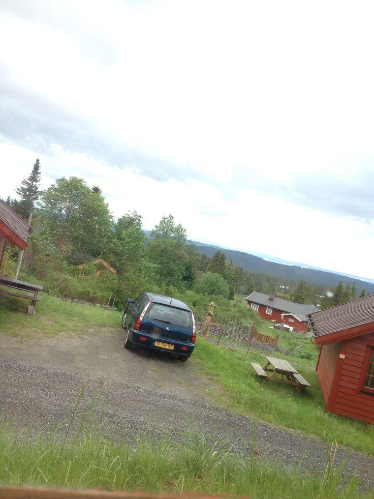 Wo 11-6-2014 / Nordseter / 8.30 uur