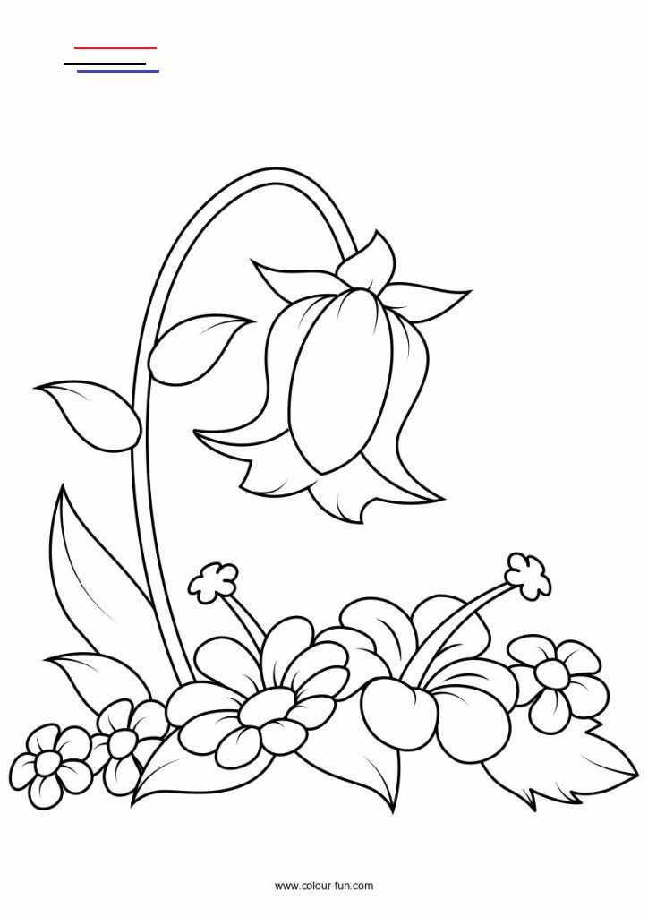 Ribbonflower In 2020 Flower Coloring Pages Embroidery Patterns Vintage Colouring Pages
