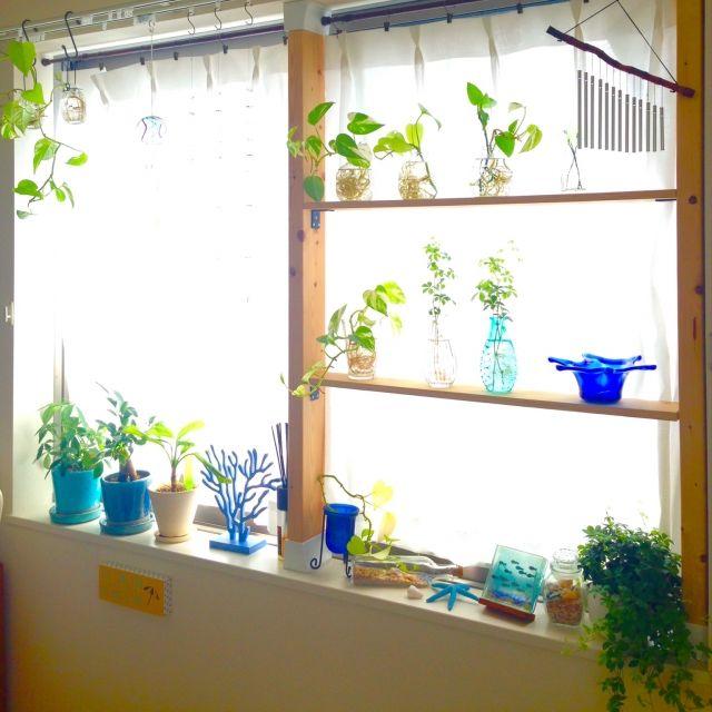 maiさんの、棚,DIY,一人暮らし,1K,DULTON,ディアウォール,賃貸マンション,のお部屋写真