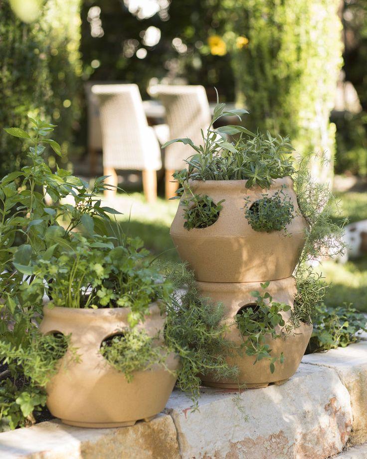 Strawberry Pot & Herb Planter: Terracotta Colored Polyethylene Pot