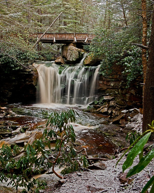 Elakala Falls in the Blackwater Falls state park, WV under a dusting of snow.