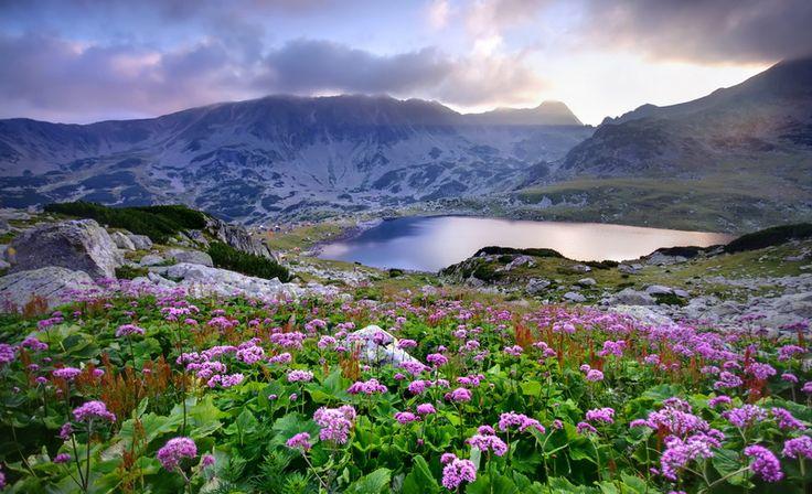6 Lacuri din Romania in care sa te racoresti in zilele caniculare: Lacul Bucura, judetul Hunedoara.