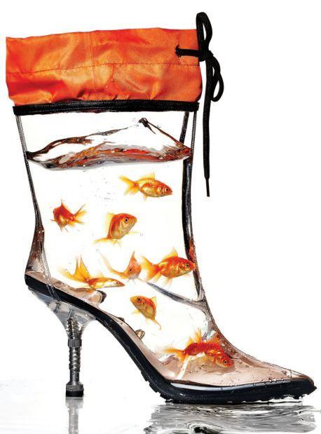 La chaussure le nouvel aquarium aquariums crazy shoes for Shoes with fish in them