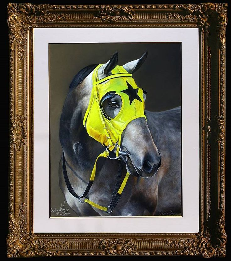 The secret in painting the perfect horse . Is in the ability to paint the imperfections perfectly. Captain Kangaroos completed pastel portrait.. .  .  .  .  #equineartistsday #instaequine #investmentart #artist #equineart #pastelart #horses #thouroughbred #racing #dihf #art #artoftheday #horseracing