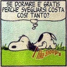 Caro Snoopy, x la legge di compensazione   ......................................Dear Snoopy, for the law of compensation