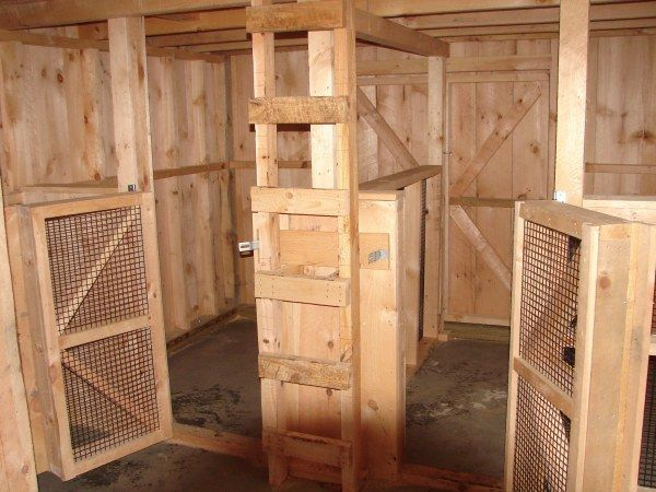 Nursery stalls for goats. This way everyone can see each other, but stay safe. Perfect for curious kids with protective mamas.