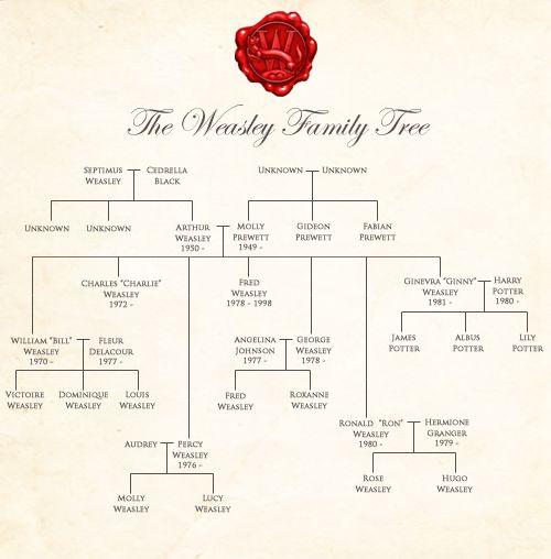 Best  Harry Potter Family Tree Ideas On   Weasley