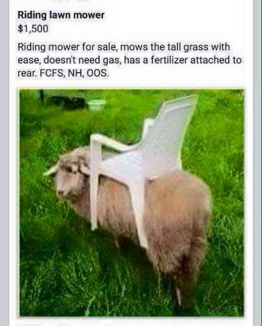 funniest farm jokes - Google Search