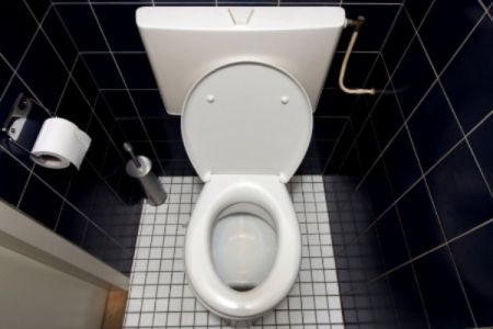 Flush what you think you know about toilets - we're taking it back to the basics. Learn all about them: