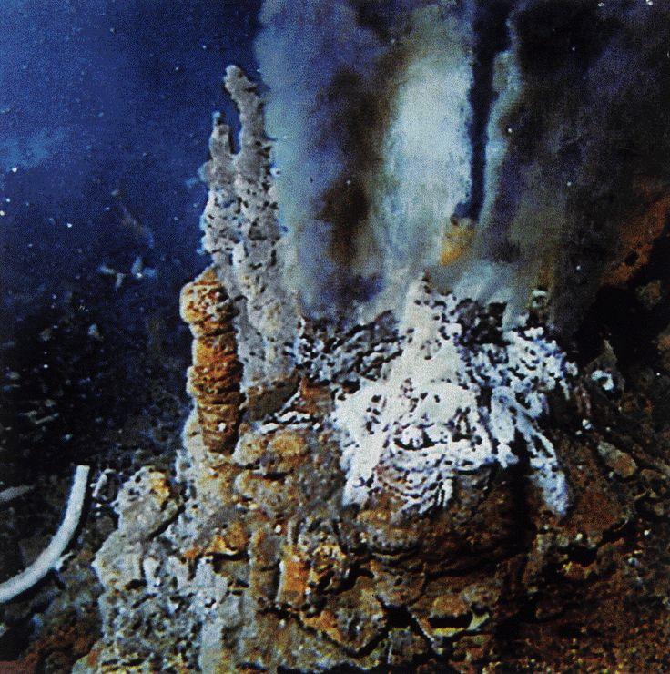 The Strange World of DeepSea Vents Earth Processes Book