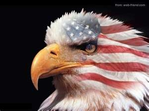 Eagle: Blessed America, Flags, American Pride, American Indian, Red White Blue, God Blessed, Patriots, Bald Eagles, Usa