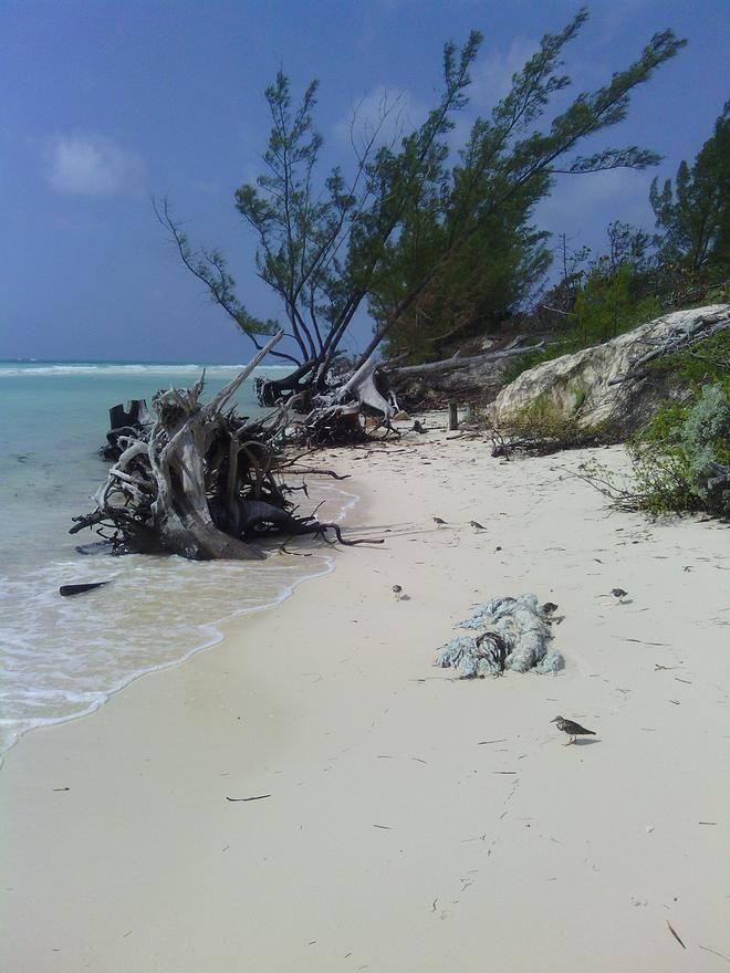 Resorts In High Rock Grand Bahama Island