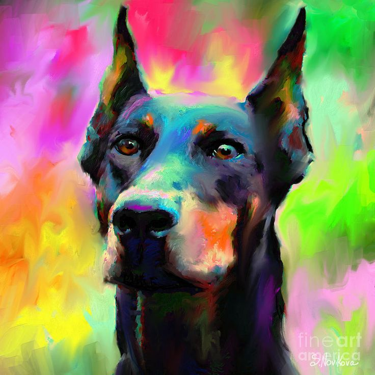 Doberman Pincher Dog portrait Painting by Svetlana Novikova - Doberman Pincher Dog portrait Fine Art Prints and Posters for Sale