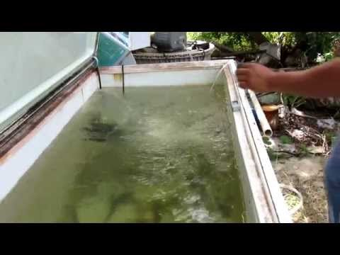 How To Make A Bait Tank From A Freezer - YouTube