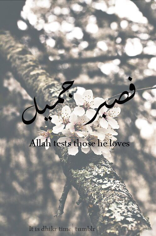 Allah tests those He loves