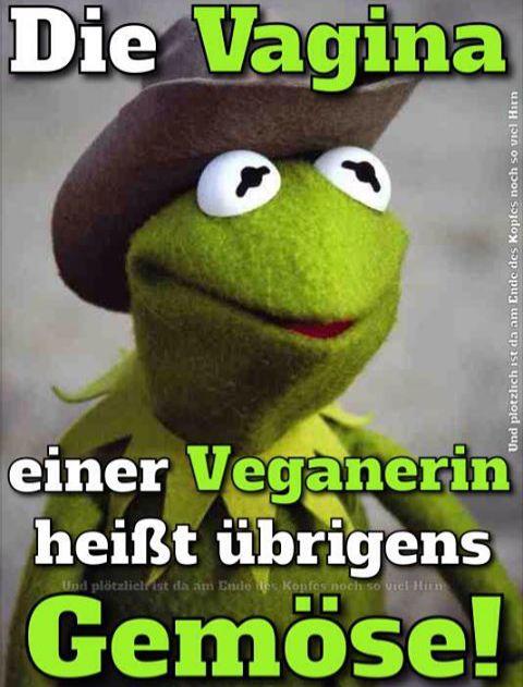 Kermit der Frosch. Ich lache zu viel deswegen! ;D