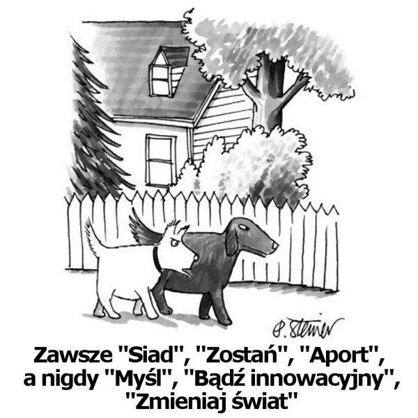 Kilka śmiesznych ilustracji z nowojorskich gazet - Joe Monster