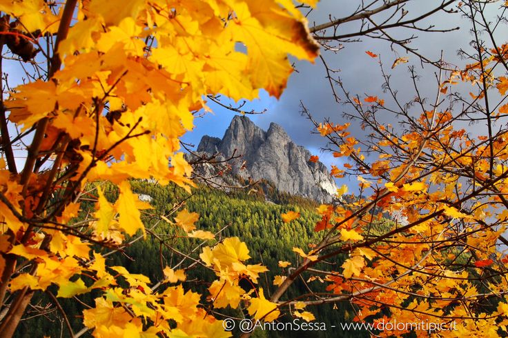 #Autumn in #Dolomites #Mountain