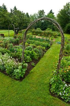 An Irish Gardener's Musings: Rustic Kitchen Gardens